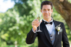 Smiling groom holding champagne flute in garden. Portrait of smiling groom holding champagne flute in garden Royalty Free Stock Photos