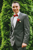 Smiling groom near green bush Stock Image