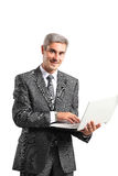 Smiling handsome businessman working with laptop Royalty Free Stock Photos