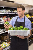 Smiling handsome worker taking a box with vegetable Stock Photography