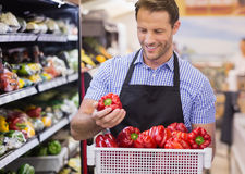 Smiling handsome worker taking a vegetable on her hand Stock Photo