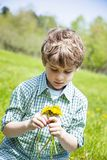 Smiling happy boy sitting in grass outside picking flowers. Face of  happy five year old boy sitting in green grass outside picking yellow dandelions stock image