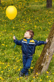 Smiling happy boy whith yellow balloon. On green field Stock Photo