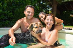 Smiling Happy Family In Swimming Pool. Happy smiling family with dog having fun together in the swimming pool Stock Photos