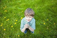 Boy sitting tossing up fresh picked flowers. Smiling Happy five year old boy sitting on the grass outside with a bouquet of picked yellow dandelions playfully stock photography