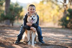 Happy little boy walking with dog in the park. Animal concept. royalty free stock photography