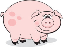 Smiling Happy Pig Royalty Free Stock Photos