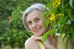 Smiling happy senior woman Royalty Free Stock Image