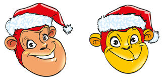 A smiling head of fiery orange and red monkey character symbol 2016 illustration on New Year's Eve. Cheerful smiling head of fiery orange and red monkey in the Stock Photography