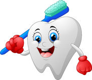 Smiling healthy white tooth cartoon character Stock Images
