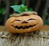 Smiling Helloween Pumpkin. Smiling Hellowing Pumpkin decorated with straw hat and green leaves Royalty Free Stock Images