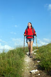 Smiling hiking young woman with backpack and trekking poles Royalty Free Stock Image