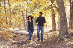 Smiling Hispanic couple walk in a forest holding hands Royalty Free Stock Photo