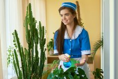 Smiling housemaid at work. Stock Photography