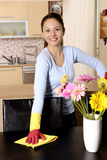 Smiling housewife cleaning the house Stock Images