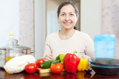 Smiling  housewife cooking veggie lunch Royalty Free Stock Photography
