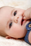 Smiling infant baby. The first year of the new life Royalty Free Stock Photos