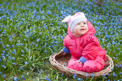 Smiling infant baby in flowers. Happy infant baby girl in basket in flowering snowdrops meadow Royalty Free Stock Image