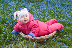 Smiling infant baby. Smiling baby girl in basket in snowdrops field Stock Photography