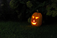 Smiling Jack-O-Lantern Royalty Free Stock Photography