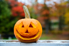 Smiling Jack-O-Lantern Stock Photos