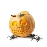 Smiling Jack-O-Lantern pumpkin isolated Royalty Free Stock Images
