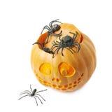 Smiling Jack-O-Lantern pumpkin isolated Royalty Free Stock Image