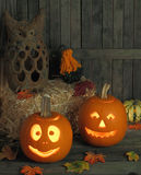Smiling Jack-o-lanterns Royalty Free Stock Photos