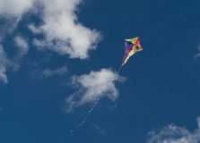 Smiling kite Stock Image