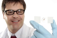 Smiling lab worker with slide. Smiling scientist, biologist, medical or laboratory worker holding up a glass slide.  Focus to the slide - not the man Stock Photos