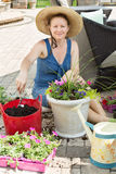 Smiling lady gardener potting up spring flowers Royalty Free Stock Photo