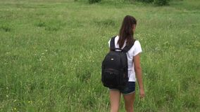 Smiling lady with ponytail wanders on vast lush meadow. Smiling lady with long hair in ponytail wanders on lush blooming green meadow with small funny dog close stock video footage