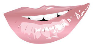 Smiling lips. Vector shining lips and white teeth Royalty Free Stock Images
