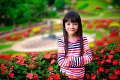Smiling little asian girl standing on flower field Stock Images