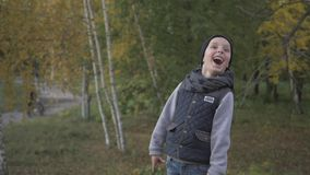 Smiling little baby boy playing in the park. Autumn. Funny cute child making vacations and enjoying Autumn. Happy family. Positive human emotions, feelings stock video