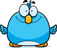 Smiling Little Bluebird Royalty Free Stock Photography