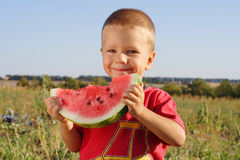 Smiling little boy eating watermelon royalty free stock images