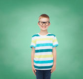 Smiling little boy in eyeglasses Royalty Free Stock Images
