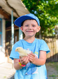 Smiling little boy holding a young chick Stock Photos