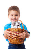 Smiling little boy with kitty in wicker Royalty Free Stock Photography