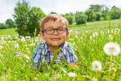 Smiling little boy lays on a grass Stock Image