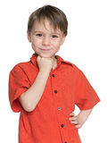 Smiling little boy in the red shirt Stock Photo