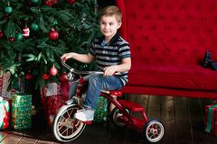 Smiling little boy riding bicycle in the room with christmas tree , new year presents , red coach, book shelf Royalty Free Stock Photos