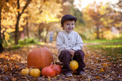 Smiling little boy, sitting on a little wooden chair in the park Stock Photos