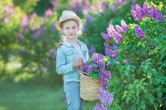 Smiling little cute blonde child girl 4-9 years with a bouquet of lilac in the hands in jeans and shirt Stock Photography
