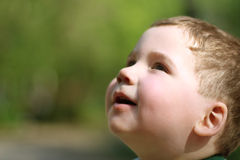 Smiling little cute boy looks up in park at summer day Royalty Free Stock Image