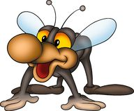 Smiling little fly Royalty Free Stock Image