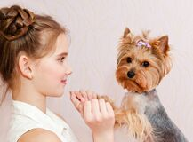 Free Smiling Little Girl Child Schoolgirl Holding And Playing With Pet Dog Yorkshire Terrier Stock Image - 176058751