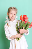 Smiling little girl holding tulips. Portrait of smiling cute kid girl holding red tulips on blue background in studio Stock Photos