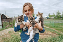 Smiling little girl holds kittens Royalty Free Stock Photography